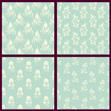 Set of vector floral backgrounds Royalty Free Stock Image