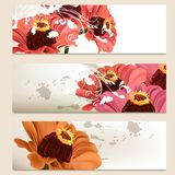 Set of vector floral backgrounds for design Stock Image