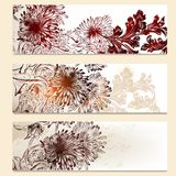 Set of vector floral banners for design. Vector set of floral brochures for business cards design Stock Images