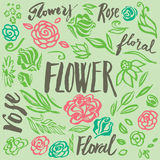Set of vector floral design elements Royalty Free Stock Images