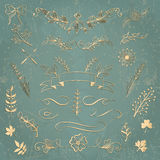Set of vector floral elements. Hand drawn design elements for cards and invitations. Royalty Free Stock Images