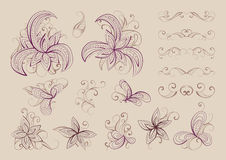 Set of vector floral elements and objects for design. Collection of elements in  beige and burgundy colors Stock Image