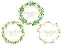Set of vector floral frame. Stock Photos