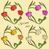 Set of vector floral hearts with colored tulips Stock Photos