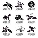 Set of vector floral logos vector illustration