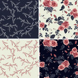 Set of vector floral seamless patterns Stock Images