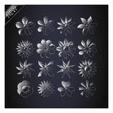 Set of Vector Flowers. Stock Image