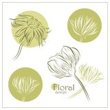 Set of vector flowers Stock Photo