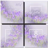 Set of vector flowers and spring lettering Stock Photography
