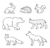 Set of vector forest animals in contours Stock Photos
