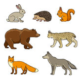 Set of vector forest animals Royalty Free Stock Photo