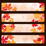 Set of vector frames with autumn maple leaves Stock Image