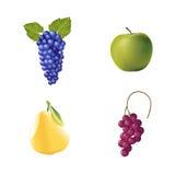 Set of Vector fruit Stock Photos