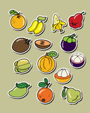 Set of vector fruit . Stock Photo