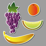 Set of vector fruits Stock Photos