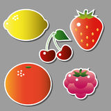 Set of vector fruits Royalty Free Stock Photo