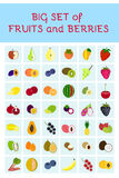 Set of vector fruits and berries Stock Photos