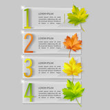 Set of vector glass banners with autumn maple leaves. Eps10 Royalty Free Illustration