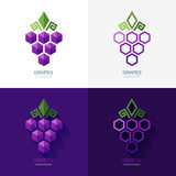 Set of vector grapes logo, icon, label elements. Royalty Free Stock Image