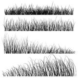Set of vector grass silhouettes backgrounds Stock Photography