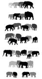 Set of vector group of elephants Royalty Free Stock Photography