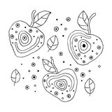 Set of vector hand drawn childish juicy, fruits. Cute childlike cherry with leaves, seeds, drops. Doodle, sketch, cartoon style. L Stock Photos