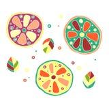 Set of vector hand drawn childish juicy, fruits. Cute childlike lime, orange, lemon, grapefruite, leaves, seeds, drops. Doodle, sk Royalty Free Stock Photography