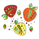 Set of vector hand drawn childish juicy, fruits. Cute childlike strawberry, leaves, seeds, drops. Doodle, sketch, cartoon style. L Stock Images