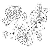 Set of vector hand drawn childish juicy, fruits. Cute childlike strawberry, leaves, seeds, drops. Doodle, sketch, cartoon style. L Stock Photo