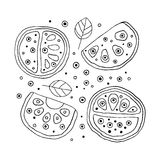 Set of vector hand drawn childish juicy, fruits. Cute childlike watermelon with leaves, seeds, drops. Doodle, sketch, cartoon styl Royalty Free Stock Photo