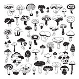 Set of vector hand-drawn, doodles mushrooms. Stock Photography