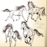 Set of vector hand drawn horses Royalty Free Stock Photos