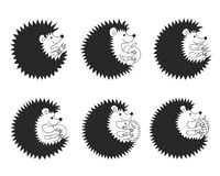 Set of vector Hedgehogs Stock Photos