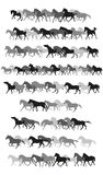 Set of vector horses silhouettes in black and grey Royalty Free Stock Photo