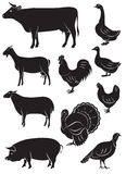 Set vector icons with farm animals and birds vector illustration