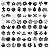 Set of 72 vector icons flowers. Set of 72 vector graphic icons flowers Stock Photos