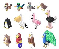 Set vector illustration of cute isometric bird and poultry in minimal style. stock illustration
