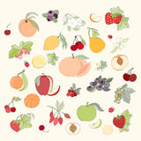 Set of vector illustration of fruits and berries Royalty Free Stock Photography
