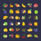 Set Vector Illustration of Fruits. Set of vector illustration of fruits. Flat elements on white background Stock Images