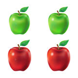 Set of vector illustration  green and red apples. Set of vector illustration of a juicy green and red apples with leaf and dew drops Stock Image