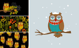 Set of vector illustrations with fashionable owl Royalty Free Stock Images