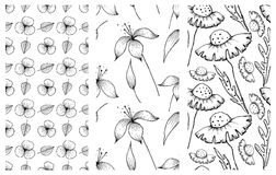Set of vector illustrations of flowers. Seamless black and white backgrounds with hand drawn lily, dandelions with leaves Hand dra vector illustration
