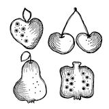 Set of vector illustrations of fruits. Royalty Free Stock Photography