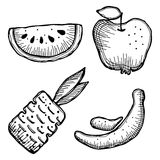 Set of vector illustrations of fruits Stock Images