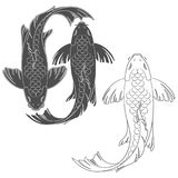 Set of vector illustrations with a mirror koi carp. Stock Photos