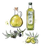 Vector watercolor illustration with olive oil. Set of vector illustrations Olive oil. Hand drawn green and black olives with leaves, glass bottle and pitcher Royalty Free Stock Photography