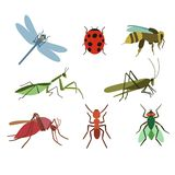 Set of vector insects Royalty Free Stock Images