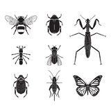 Set of vector insects volume 4. Set of vector insects Royalty Free Stock Image