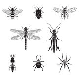 Set of vector insects volume 3. Set of vector insects Stock Image