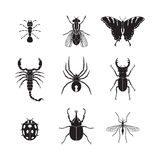 Set of vector insects volume 1. Set of vector insects Stock Photo